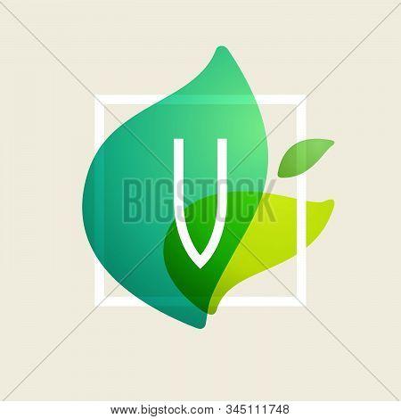 V Letter Logo In Square Frame At Green Leaves Watercolor Background. Vector Ecology Typeface For Bot