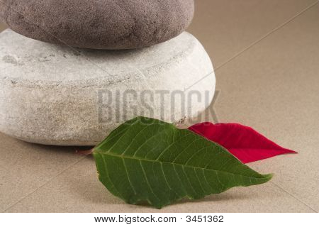 3 Pebbles With Leafs