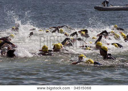 Swim Fight In Sea