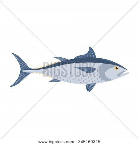 The Tuna Is Isolated On The White Background.