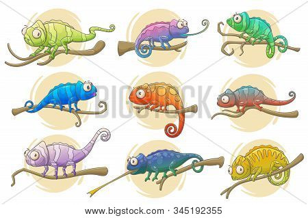 Chameleon Lizard Icons Of Reptile Animals Vector Design. Colorful Chameleons Sitting On Branches Of