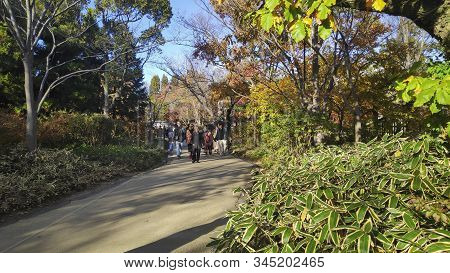 Himeji, Japan- 30 Nov, 2019: Koko-en Garden At Himeji Of Japan. Koko-en Is A Japanese Garden Located