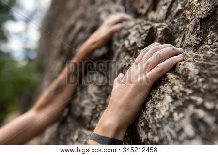 A Close Up Shot On The Tattooed Arms And Fingers Of A Sporty Caucasian Person Climbing A Stone Crag