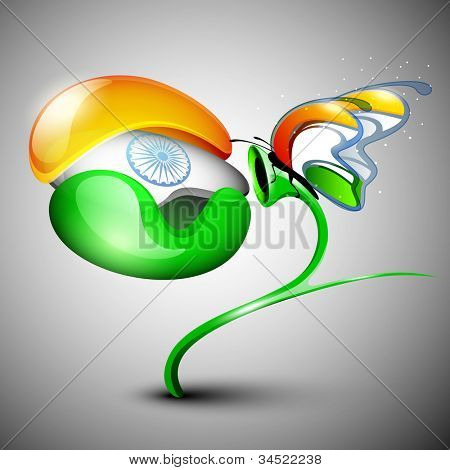 Indian Flag butterfly on Indian flag flower isolated on grey background. EPS 10.