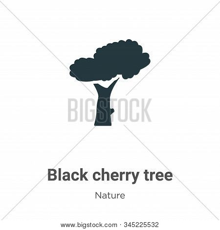 Black cherry tree icon isolated on white background from nature collection. Black cherry tree icon t
