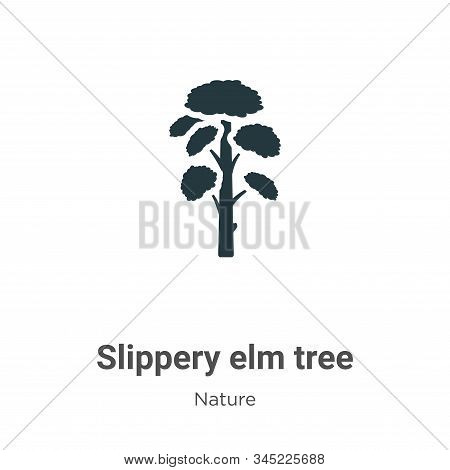 Slippery elm tree icon isolated on white background from nature collection. Slippery elm tree icon t