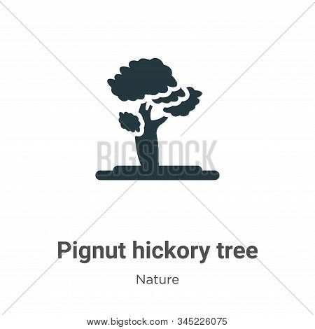Pignut hickory tree icon isolated on white background from nature collection. Pignut hickory tree ic