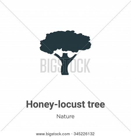 Honey-locust tree icon isolated on white background from nature collection. Honey-locust tree icon t