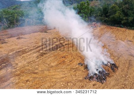 Rain forest land burned to make way for palm oil plantations. Deforestation environmental problem