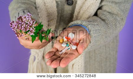 Man Hand Holds Pills And Herbal Plant. Natural Medicine Concept. Alternative Herb Medicine. Homeopat