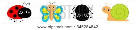 Insect Set Line. Butterfly, Ladybug Ladybird, Spider, Lady Bug, Snail. Cute Cartoon Kawaii Baby Anim