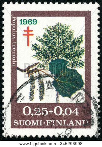 Vintage Stamp Printed In Finland 1969 Shows Trees