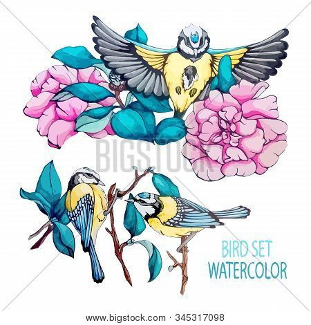 Collection Vector Stock Illustration Blue Bird, Tit, Branch, Navy Blue Leaves, Pink Flower, Peony In