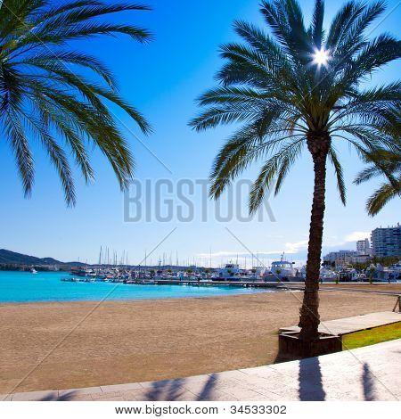 Ibiza Sant antoni de Portmany Abad beach with palm trees