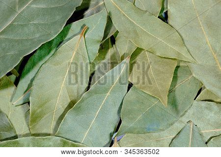 Dried Bay Leaves For Texture Or Background