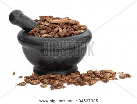Notopterygium root herb used in traditional chinese herbal medicine in a black marble mortar with pestle over white background. Quang ho