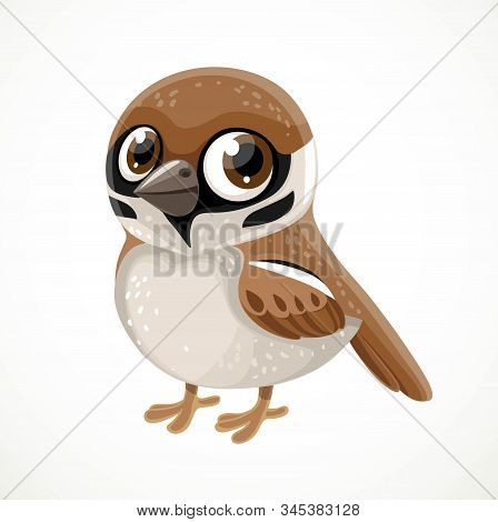 Cute Cartoon Sparrow Isolated On White Background