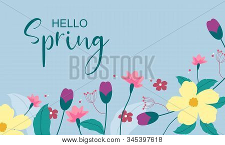 Hello Spring Text Vector Banner Greetings Design With Colorful Flower Elements Like Daisy And Sunflo