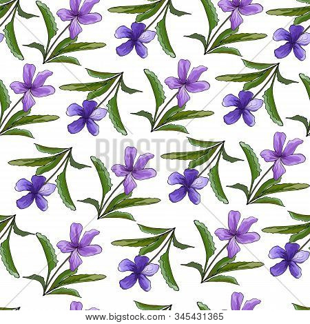 Violet Flowers On A Light Background. Spring / Summer Floral Background. Seamless Texture With Viole
