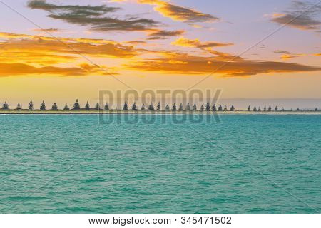 Turquoise Sea Water And Row Of Conifer Trees At Sunset - Minimal Landscape With Copy Space
