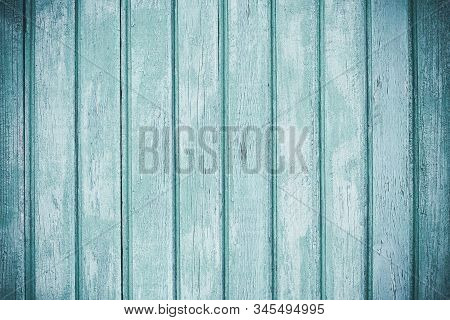 Light Colored Timber Fence With Peeling Paint. Shabby Decrepit Wooden Boards. Wood Lamellas. Blue Ro