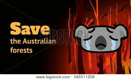 Banner With A Burning Forest, Koala And The Inscription Save The Australian Forests. Cartoon Vector