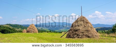 Haystack On The Grassy Field In Summer. Traditional Carpathian Rural Landscape In Mountains. Sunny W