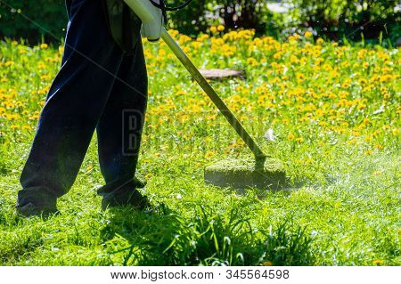 Trimming Dandelions And Other Weeds In The Yard. An Overgrown Backyard Clearing With Brush Cutter. S