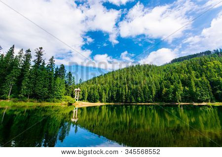 Synevir Mountain Lake In Summertime. Great Outdoor Nature Scenery. Coniferous Forest With Tall Trees