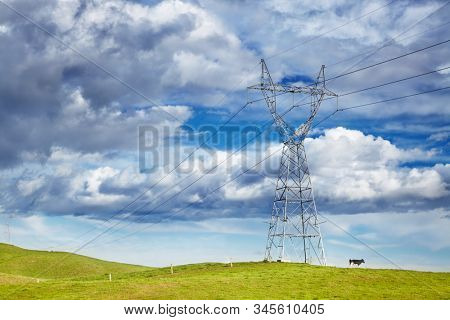 Landscape with electric power-line and grazing cow against blue sky, ecology concept