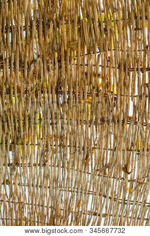 Brown Cane Stalk Background. Background Of Dry Stalks Of Cane. Vertical Photo