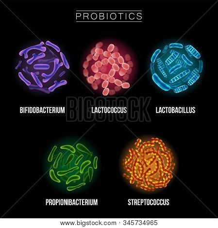 Collection Of Different Probiotic Microorganisms Illustrations. Good Bacteria And Microorganisms For