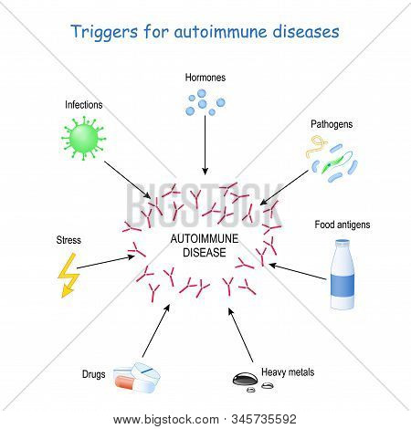 Triggers For Autoimmune Diseases. The Immune System To Produce Antibodies That Attack And Cause Dama