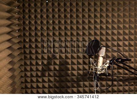 Professional Studio Microphone For Voice Recording. Sound Recording Studio. Soundproof Room.