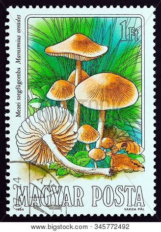 Hungary - Circa 1984: A Stamp Printed In Hungary From The