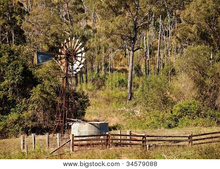 Australian Countryside With Gumtrees And Windmill