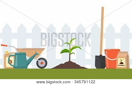 Just Planted In The Ground Sprout And Garden Tools Around. Seedling Fruit Tree With Shovel, Fertiliz