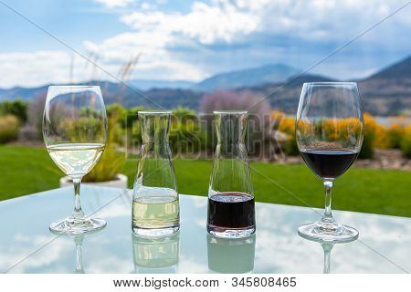 Small Decanters And Glasses Filled With Red And White Wines On A Glass Table, Wine Tasting Stemware