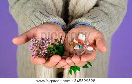 Alternative Medicine Tablets. Man Hand Holds Pills And Herbal Plant. Natural Medicine Concept. Alter