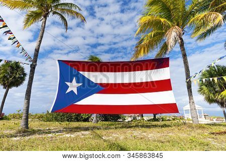 Puerto Rico Flag Among Palm Trees. Puerto Rican Flag Against Tropical Palm Trees And Blue Sky. Beaut