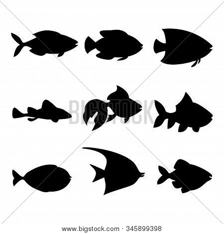 Set Of Beautiful Fish, Great Design For Any Purposes. Vector Image. Black Element. Modern Banner Wit