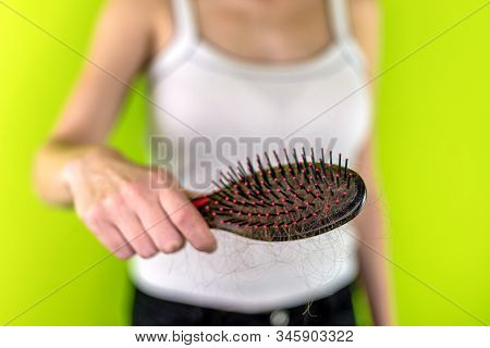 Hairbrush Full Of In Hand Of Woman.