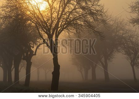 sunrise near Znojmo, South Moravia, Czech Republic