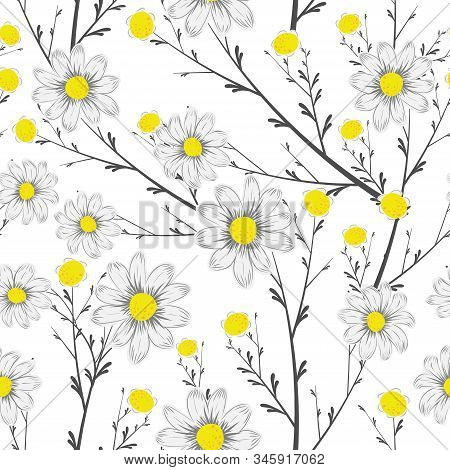 Black White Bouquet Chamomile Flowers With Yellow Middle Seamless Vector On White Background. Fresh