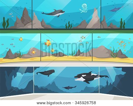 Museum Aquarium. Underwater Zoo Children With Parents Watching Big Fishes Vector Horizontal Banner.