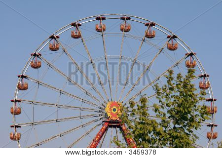 Amusement And Tree
