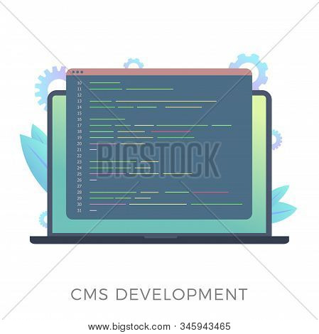 Website Content Management System (cms) Development Flat Vector Icon. Programming And Installation C