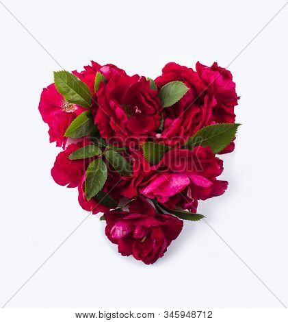 Heart Shaped Red Roses On White. Fragrant Roses Isolated On White Background. Roses With Copy Space