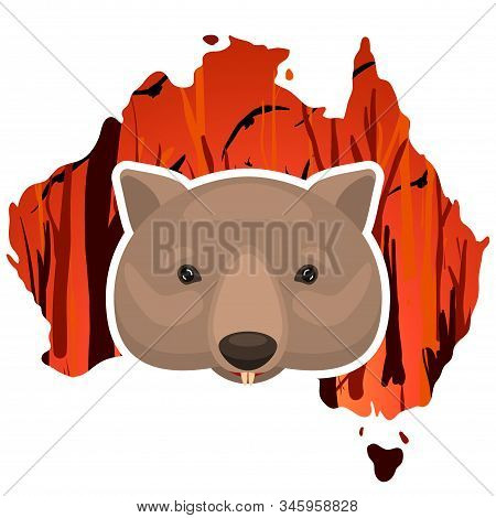 Weeping Wombat Icon On A Australia Map Outline Background With A Burning Forest. Cartoon Vector Illu