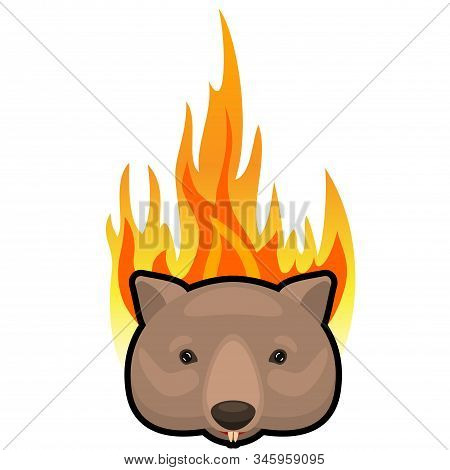 Weeping Wombat Icon On Fire Background. Cartoon Vector Illustration